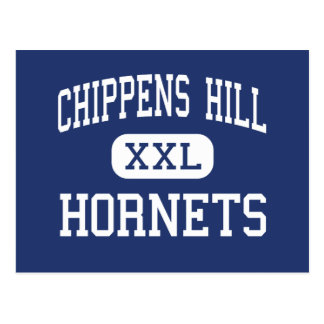 Chippens Hill Hornets Middle Bristol Postcard