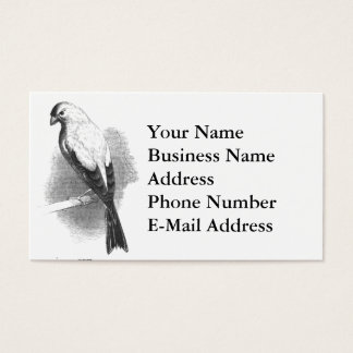 Chipper Canary Black and White Sketch Business Card
