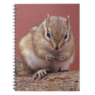 Chippie Notebook