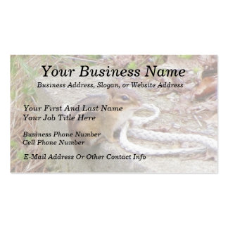 Chippie The Chipmunk Investigates A Rope Business Card Template