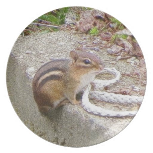 Chippie The Chipmunk Investigates A Rope Party Plates