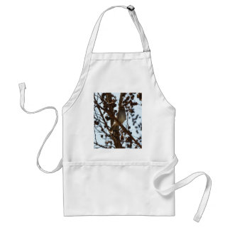 Chipping Sparrow Adult Apron