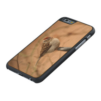 Chipping Sparrow Carved Maple iPhone 6 Case