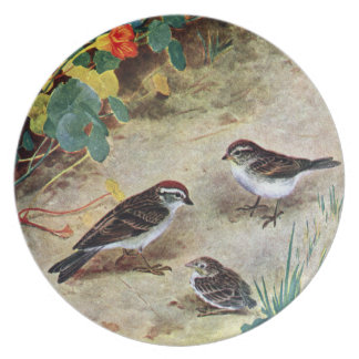 Chipping Sparrow Family and Nasturtiums Dinner Plate