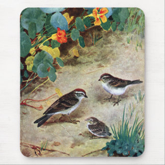 Chipping Sparrow Family and Nasturtiums Mouse Pad