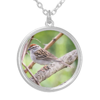 Chipping Sparrow Pendants