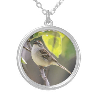 Chipping Sparrow Custom Necklace