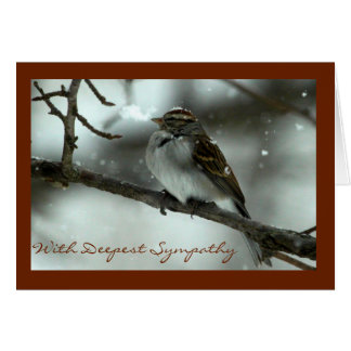 Chipping Sparrow Sympathy Card