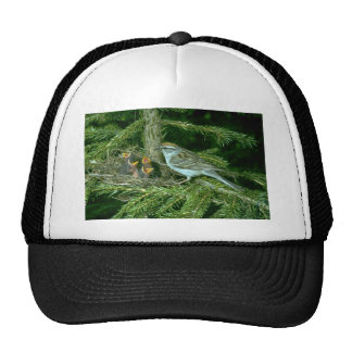 Chipping Sparrow with nest Trucker Hat