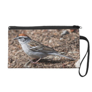 Chipping Sparrow Wristlet Purse