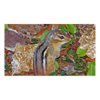 Chippy Cute Chipmunk Business Cards