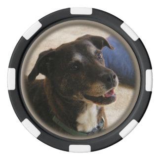 Chipset feliz del póker del ~ del perro juego de fichas de póquer