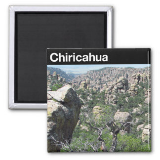 Chiricahua National Monument Refrigerator Magnets