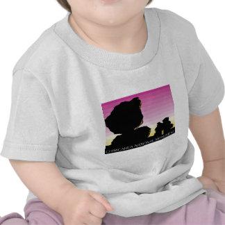 Chiricahua National Monument Shirts