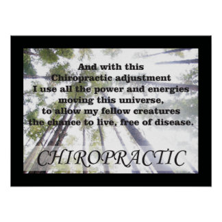 Chiropractic Adjustments Quotes Sayings Posters