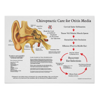 Chiropractic Care for Otitis Media Ear Infections Poster