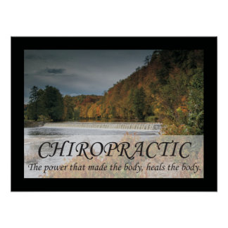 Chiropractic Heals the Body Quotes Sayings Poster