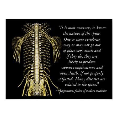 Chiropractic Health Quotes Hippocrates Poster