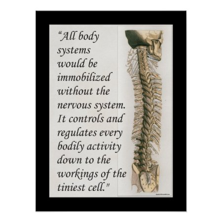 Chiropractic Quote Nervous System Poster Customize