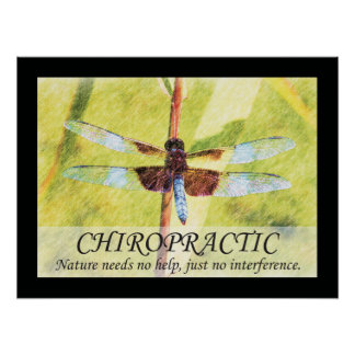 Chiropractic Quotes and Sayings Nature Poster