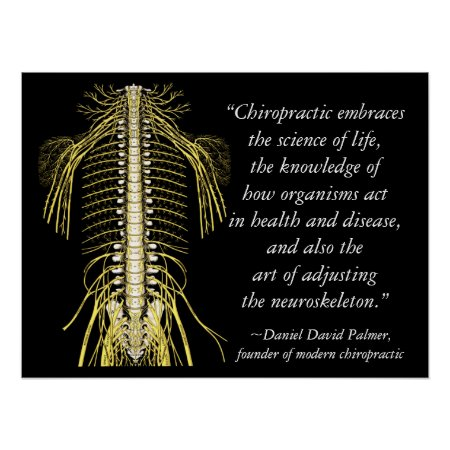 Chiropractic Quotes & Sayings DD Palmer Poster