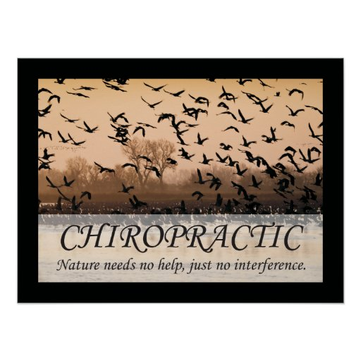 Simple Chiropractic Quotes additionally Image1j7s also Chiropractic poster d d palmer 228066894895432288 in addition White Background Hd Pattern 6393 furthermore Chiropractic Quotes For Facebook. on chiropractic quotes