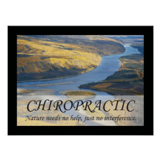 Chiropractic Quotes & Sayings Nature Poster at Zazzle