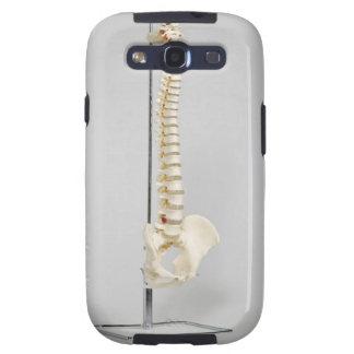 Chiropractic skeleton samsung galaxy SIII case