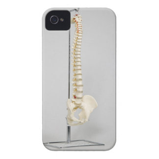 Chiropractic skeleton iPhone 4 cover