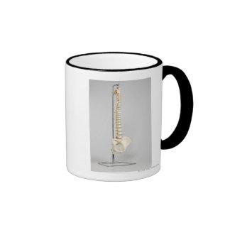 Chiropractic skeleton ringer coffee mug