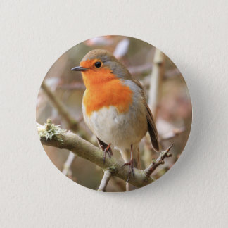 Chirpy Robin Pinback Button