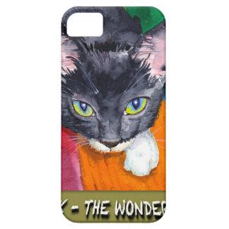 ¡Chirrido - el gato de la maravilla! iPhone 5 Case-Mate Funda