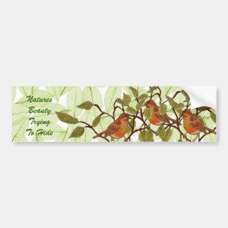 Chirrido hermoso etiqueta de parachoque