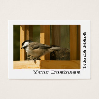 CHIS Chickadee is Suspicious Business Card