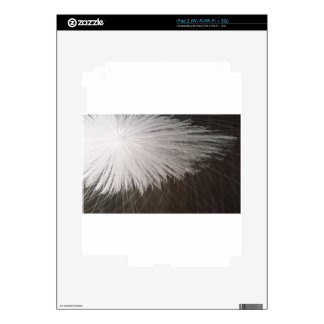 Chispa blanca skins para iPad 2