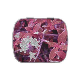 chispa roja de las hojas de las flores blancas latas de caramelos
