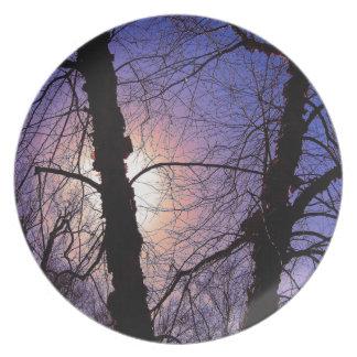 Chispas de KIW: Placa hivernal de las ramas de la Platos Para Fiestas