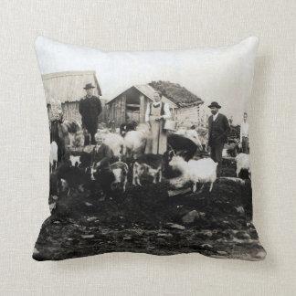 Chispas de KIW: Vin la granja en la almohada de