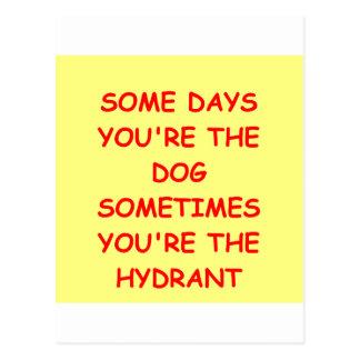chiste del perro tarjetas postales