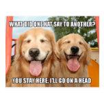 Chiste divertido Meme del gorra del golden retriev Tarjeta Postal