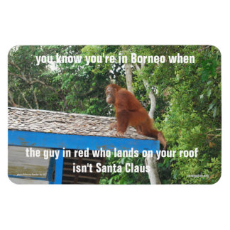Chistes animales del navidad de Papá Noel Borneo s Imán De Vinilo