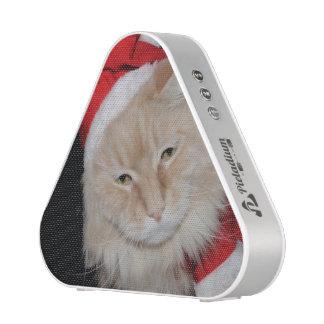 Chistmas Cat Kato Speaker