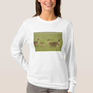 Chital Deers and a young one,Corbett National T-Shirt