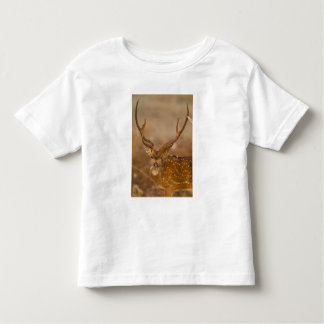 Chital or Cheetal, Spotted Deer, male grazing Tshirt