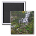 Chittenango Falls 2 Inch Square Magnet