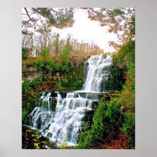 Chittenango Falls State Pak Poster