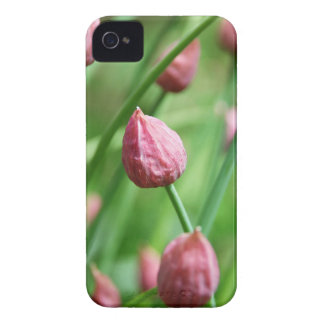 Chive buds iPhone 4 case