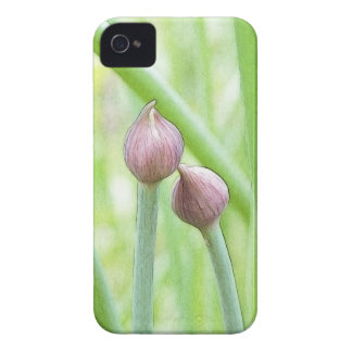 Chive Flower Buds iPhone 4 Case-Mate Case