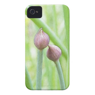 Chive Flower Buds iPhone 4 Case-Mate Cases