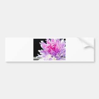 Chive Flower in Oil Bumper Sticker